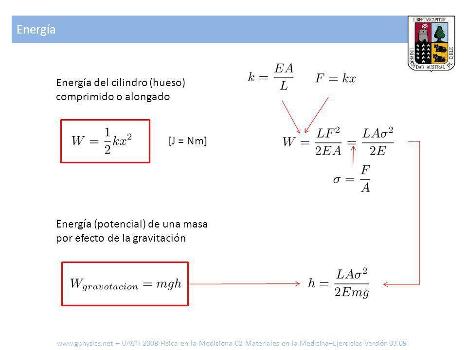 Energía Energía del cilindro (hueso) comprimido o alongado [J = Nm]